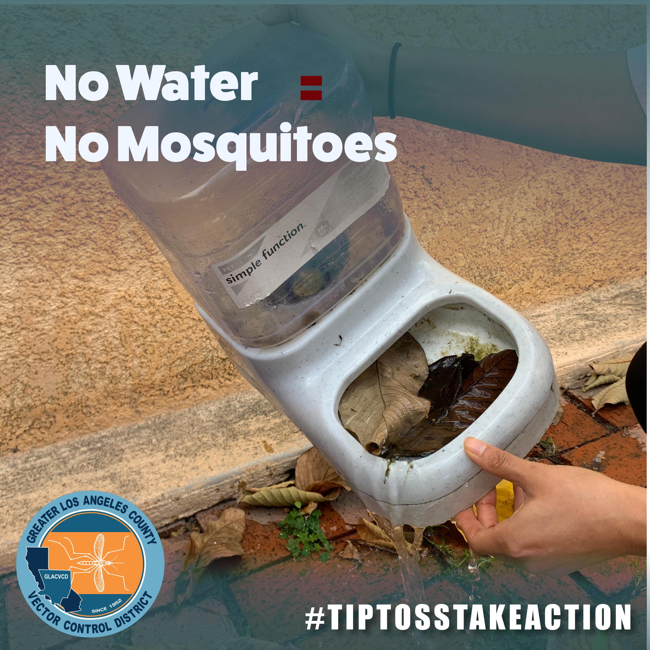 No water no mosquitos
