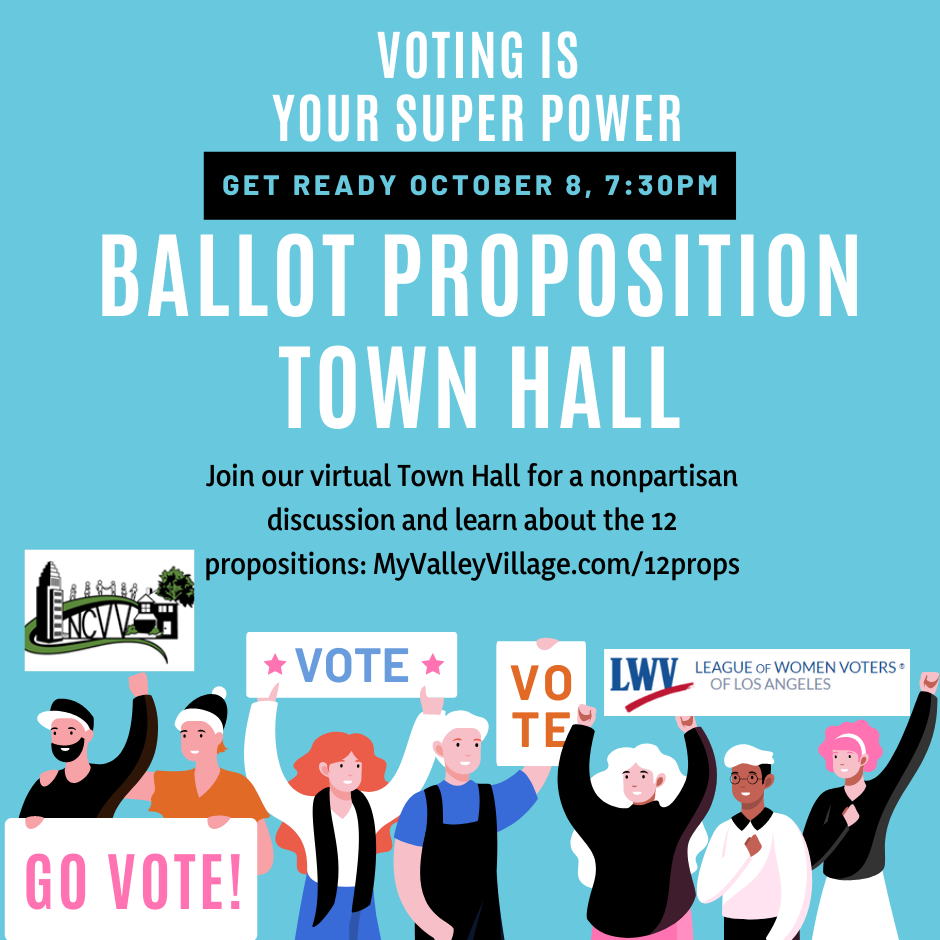 Ballot Proposition Town Hall
