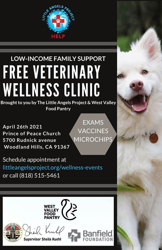 wellness clinic for dogs